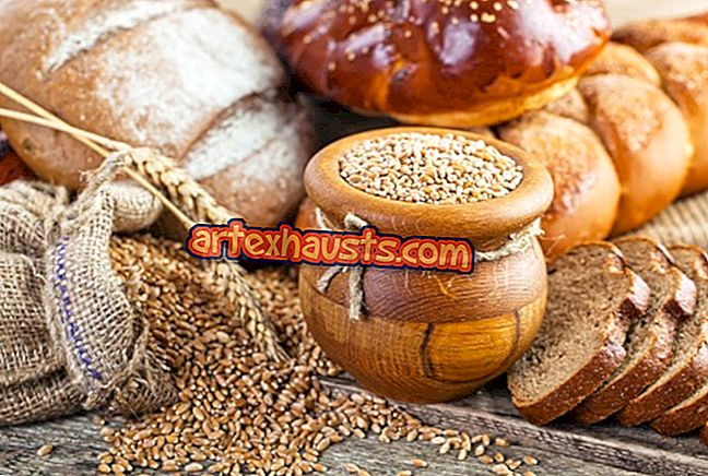 toidud mis poletavad kohu rasva kiiresti nofapi rasva poletamine