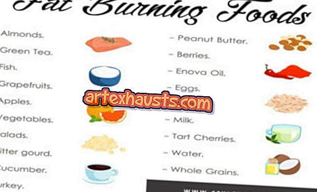 looduslikud toidud mis poletavad keha rasva